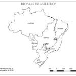 Mapa Biomas Brasileiros Colorir