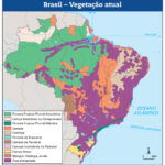 Mapa Vegetação do Brasil