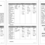 Planejamento Anual 6º Ano Ensino Fundamental